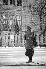 Snow city 3