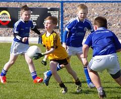 051 Loughmacrory at U8 Football Blitz Apr2016