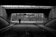 Suburbian Bridge