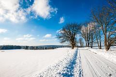Winter rund um die Ködeltalsperre-8