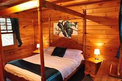 Hollie Bedroom