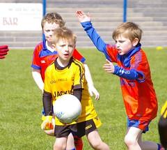 097 Loughmacrory at U8 Football Blitz Apr2016