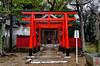 Photo:「稲荷社」猪名野神社 - 兵庫 By