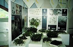 32-08-86 18 - Greenhouse 2000 Neoplants (2)