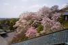 Photo:東大寺二月堂 / Nigatsu-do, Todai-ji Temple By