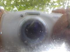 "DSCN9896 • <a style=""font-size:0.8em;"" href=""http://www.flickr.com/photos/145215579@N04/41591002495/"" target=""_blank"">View on Flickr</a>"