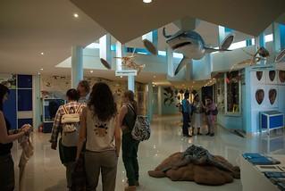 Ukuwela volunteers inside Natal Sharks Board