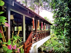 Bukit Tinggi, 28750 Bentong, Pahang https://goo.gl/maps/wAJzLmUeCXB2  #travel #holiday #traveling #trip #Asian #Malaysia #旅行 #度假 #亚洲 #马来西亚 #วันหยุด #การเดินทาง #ホリデー #휴일 #여행 #праздник #путешествие #japanVillage #日本村 #Resorts #リゾート #รีสอร์ท #리조트 #Курорты #