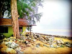 Kampung Sungai Sembilang, 45600 Jeram, Selangor https://goo.gl/maps/B52aupq36on  #travel #holiday #Asian #Malaysia #旅行 #度假 #亚洲 #马来西亚 #trip #traveling #beach #海滩 #pantai #วันหยุด #การเดินทาง #ホリデー #휴일 #여행 #праздник #путешествие #ビーチ #바닷가 #ชายหาด #пляж #Jer