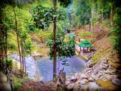 Toi Waterfall 86, 71600 Kuala Klawang, Negeri Sembilan 013-670 2168 https://goo.gl/maps/XRa7fzpSE1H2  #travel #holiday #trip #traveling #旅行 #度假 #亞洲 #Asian #Malaysia #馬來西亞  #여행 #ホリデー #휴일 # #праздник #путешествие #วันหยุด #การเดินทาง #Waterfall #瀑布 #น้ำตก