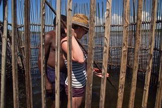 Volunteer fishtrap spearing at Kosi Bay