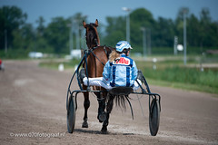 070fotograaf_20180610_ Draverij - 64ste Gouden Zweep_FVDL_Paardensport_4730.jpg