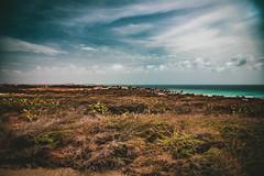 Aruba_1805041518
