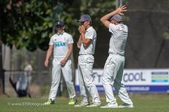 070fotograaf_20180715_Cricket Quick 1 - HCC1_FVDL_Cricket_3898.jpg