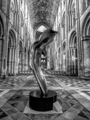 Tree of Life Exhibition by Helaine Blumenfeld in Ely Cathedral