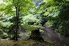 Photo:20180502_144718 By