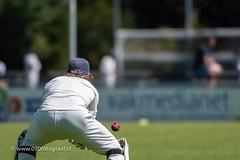 070fotograaf_20180715_Cricket Quick 1 - HCC1_FVDL_Cricket_4592.jpg