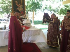 "2018 Grape Blessing Picnic • <a style=""font-size:0.8em;"" href=""http://www.flickr.com/photos/124917635@N08/42065209500/"" target=""_blank"">View on Flickr</a>"