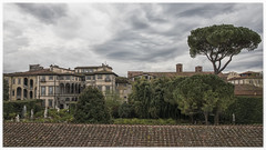 Palazzo Pfanner