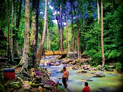 Ulu Bendul-Angsi trailhead 2.727418N ,102.0758E, Tanjung Ipoh, Negeri Sembilan https://goo.gl/maps/h5ZoerVZiT72 #travel #holiday #traveling #trip #Asian #旅行 #度假 #亞洲 #馬來西亞 #วันหยุด #การเดินทาง #ホリデー #휴일 #여행 #праздник #путешествие #大自然 #nature #河 #River #강