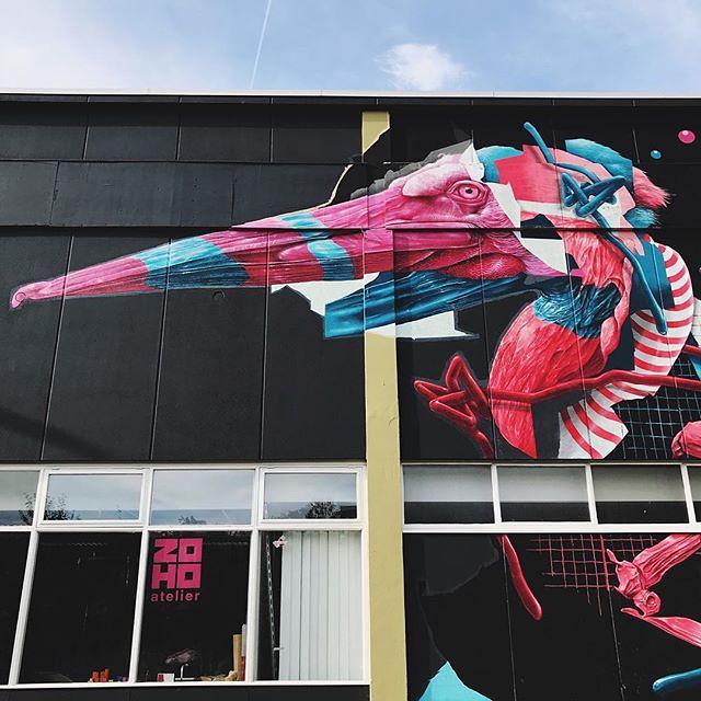 #rotterdam #streetart #bird #colours #blue #sky #igrotterdam #visitrotterdam #wanderlust #citytrip #travel #art #streetartistry #ignetherlands #netherlands #red #vsco #vscocam