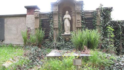 """Nachmittag im Arboretum Plauen ehemaliger Friedhof_2 mit Bernhard Weisbach • <a style=""""font-size:0.8em;"""" href=""""http://www.flickr.com/photos/154440826@N06/30159968267/"""" target=""""_blank"""">View on Flickr</a>"""