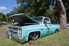 C10s in the Park-80