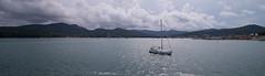View on the Bay of Portoferraio, Elba