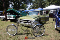 C10s in the Park-101