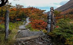 Otoño en Ushuaia (Autumn in Ushuaia)