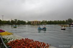 Elgoli Park Tabriz