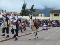 """Das Lama darf bei der """"Fiesta"""" nicht fehlen:-)"""