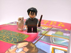 Harry Potter and the Wizarding World