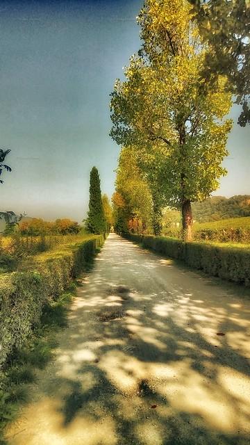 Passeggiata a Monticelli