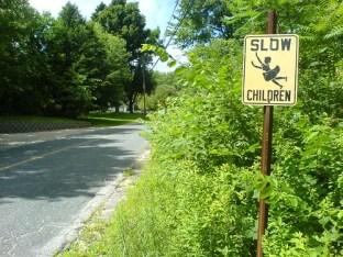 Beware Low Flying Children
