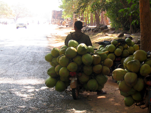 Bike with MANY Coconuts.jpg