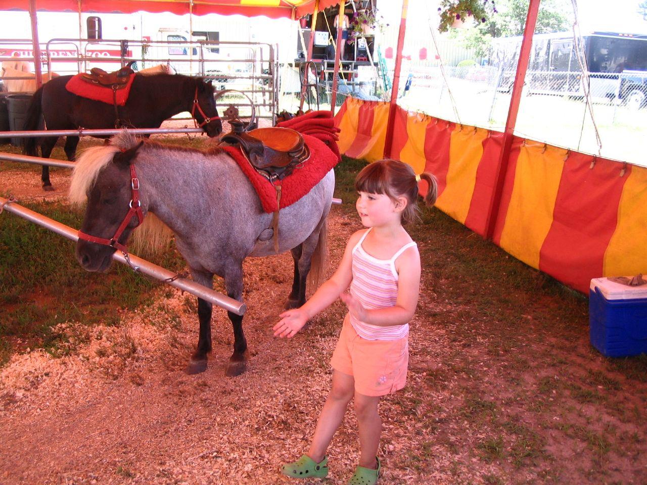 Cheshire Fair, 2007