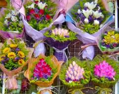 Hong Kong - Flower Market