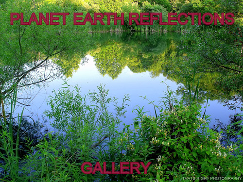 PLANET EARTH REFLECTIONS group gallery (NEW UPDATES)