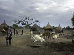 Project_Ethiopia_0050