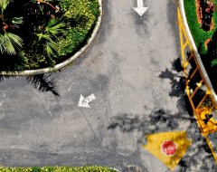 Street -Pavement