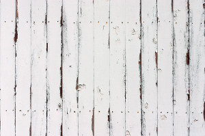 Old White Fence Background  Another background texture