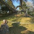Fort walton temple mound fort walton beach okaloosa county florida