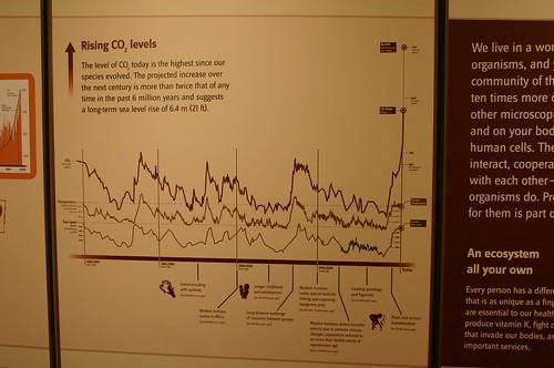 Rising CO2 Levels