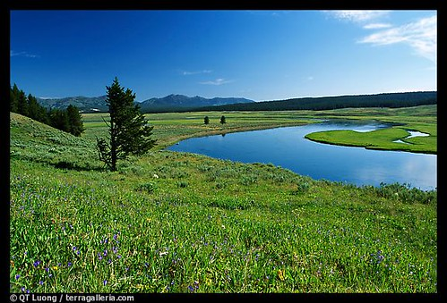 Stillwaters and green pastures  listen_for_my_heart  Flickr