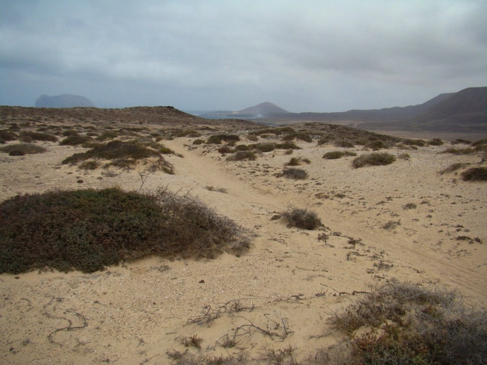 Dunas moviles Isla La Graciosa 02