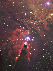 The Cone Nebula/ To nefeloma Konos, Photo by David Malin