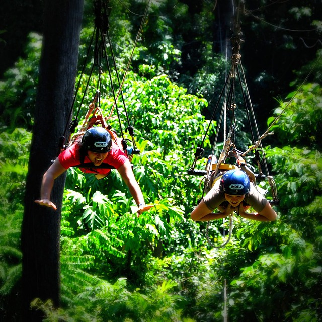 Subic Tree Top Adventure