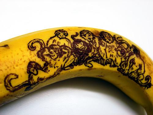 Monkeys on a Banana