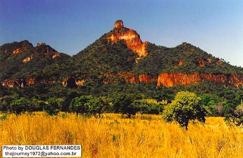 Cerrado brasileiro  sabana brasilea  brazilian savanna